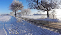 Das Winterland schafft Landstraße | Winter's land creates rural road | El país de invierno crea carretera by artistdesign