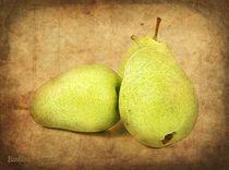 Pears by barbara orenya