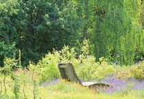Erholung im Lavendel II by Silke Bicker