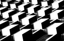 Schwarz/Weiß von Bastian  Kienitz