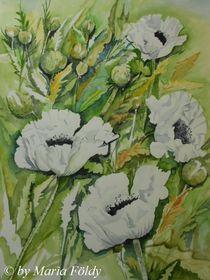 Mohn-Weiß von Maria Földy