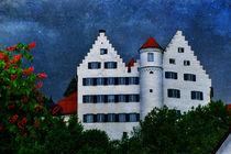 Schloß Aulendorf von Horst Hoch