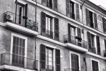 Das Fahrrad auf dem Balkon von Bastian Altenburg