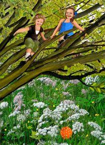Der Walnussbaum von Heidi Schmitt-Lermann