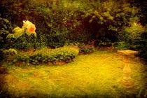 Susie,s Victorian Garden. by Heather Goodwin