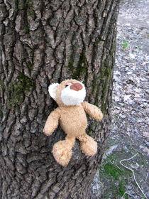 Eins mit dem Baum by Olga Sander