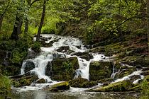Selke Wasserfall Harz bei Harzgerode von Daniel Kühne