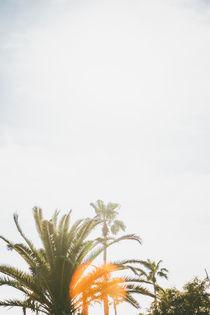 BARCELONA | Sun von Sabine Scheller
