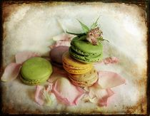 French macarons von barbara orenya