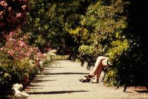 im Rosengarten  von Barbara  Keichel