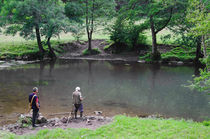 Fly Fishing at Upperdale von Rod Johnson