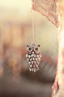 Owl Spirit von Trish Mistric