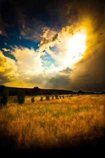 Red bench Golden Clouds von Isabel  Laurent
