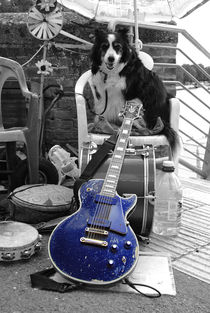 Guitar Dawg  by Rob Hawkins