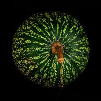 Figleaf Gourd by Henrique Souto