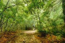 Wild promenade by dado