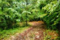 Forest street by dado