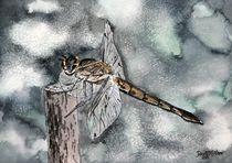 dragonfly art print by Derek McCrea