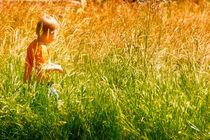auf der Sommerwiese  by Barbelotta  1