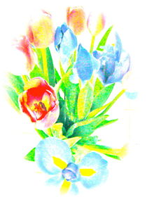 Tulips and Iris #2 by Christine Chase Cooper