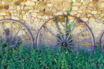 Chariot wheels and nettles by 7horses