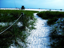 Trail to the Seacoast von skyler