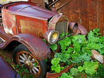 Rusted Antique Auto von Dale Bargmann