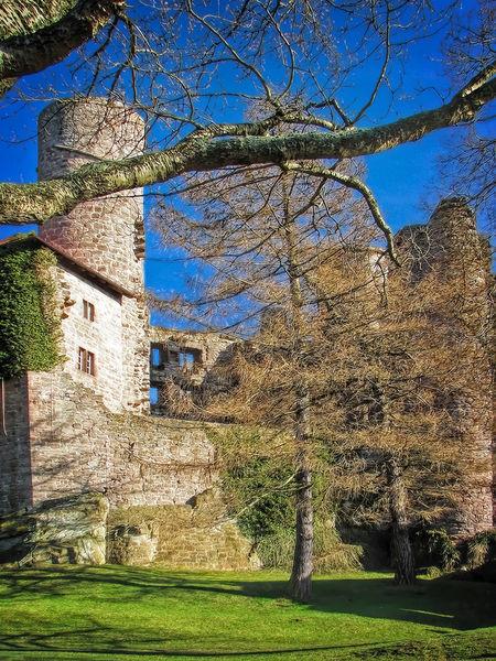 Burg-hanstein-1