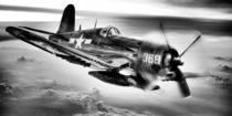 Der Rückflug Schwarz und Weiß von JC Findley
