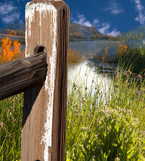 Der Zaun am See by Gunter Nezhoda