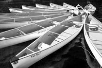 Tethered Canoes in Whistler British Columbia von Randall Nyhof