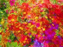 Flower blend von Robert Gipson