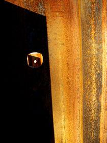 Steel Eye by Robert Riordan