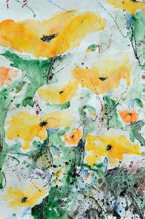 Mohn 07 by Ismeta  Gruenwald