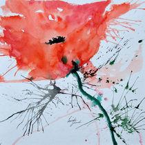 einsame Mohnblume von Ismeta  Gruenwald