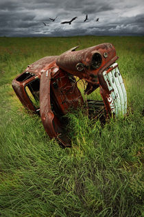 Rotting Steel Auto Carcass by Randall Nyhof