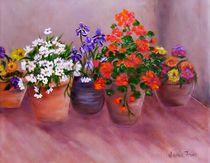 Flower Pots by Jamie Frier