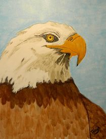 Eagle by Tanja  Beaver