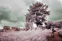 Floris-roma-2013-9804