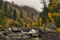 Icicle Creek Hues by Mark Kiver