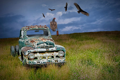 Auto-ford-truck-vultures-10