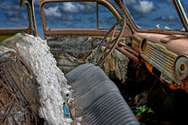 Auto Interior of Abandoned Vehicle by Randall Nyhof