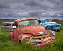 Vintage Bodies in a Junk Yard by Randall Nyhof