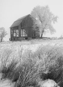 Dilapidated Barn in an early morning Hoar Frost by Randall Nyhof