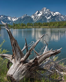 Lewis Lake at Yellowstone National Park by Randall Nyhof