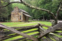 Oliver's Cabin in the Great Smokey Mountains von Randall Nyhof