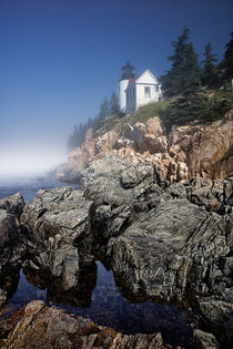 Lighthouse at Bass Harbor Maine No 11 von Randall Nyhof