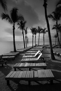 Sun Bathing Benches at a Resort on Key Islamorada by Randall Nyhof