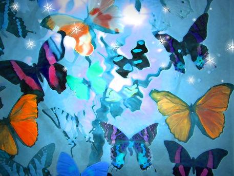 Dscn5070-butterfly-heaven-300
