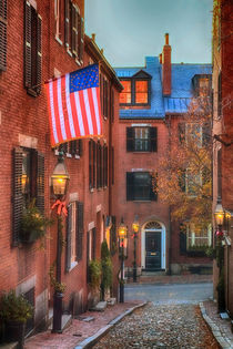 Holiday on Acorn Street by Joann  Vitali